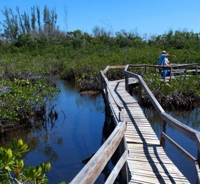 Grand Bahamas National Parks