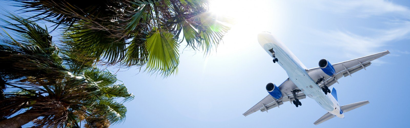 Airliner passing over tropic palm trees